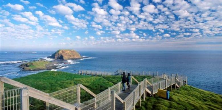 Bunyip Tours: 1 day Phillip Island Ultimate Eco Tour (BPEN)