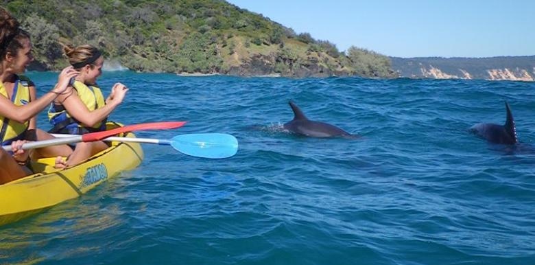 Epic Ocean Adventures: Dolphin Kayaking Rainbow Beach