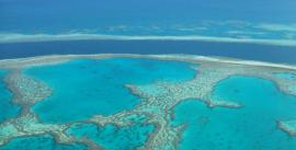 CroppedImage270137-4d5c9e375239b_16_sail-and-dive-adventures-outer-reef-low-res