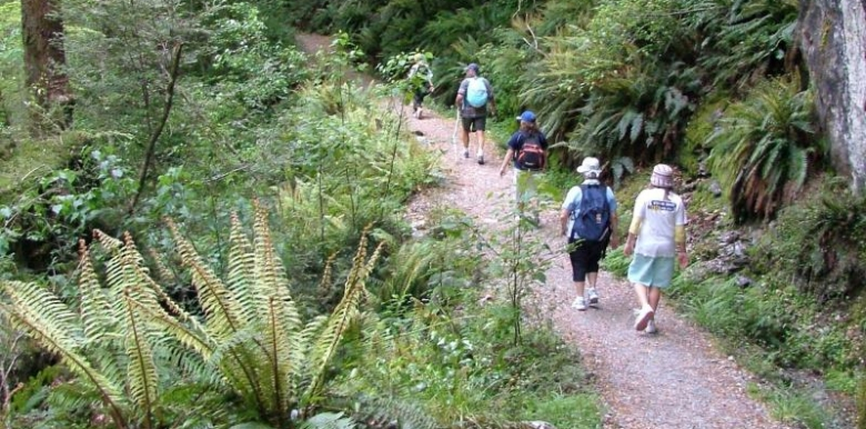 Guided Walks New Zealand: Famous Routeburn Track - 1 day walk