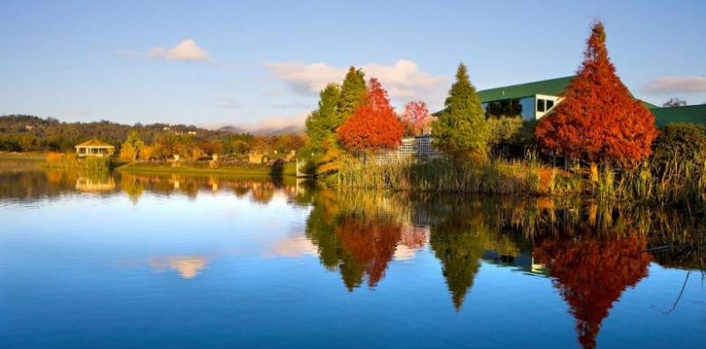 Eco Platypus Tours: 1 Day Hunter Valley Tour