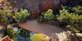 CroppedImage270137-59b72fa182dce_474_ormiston-gorge