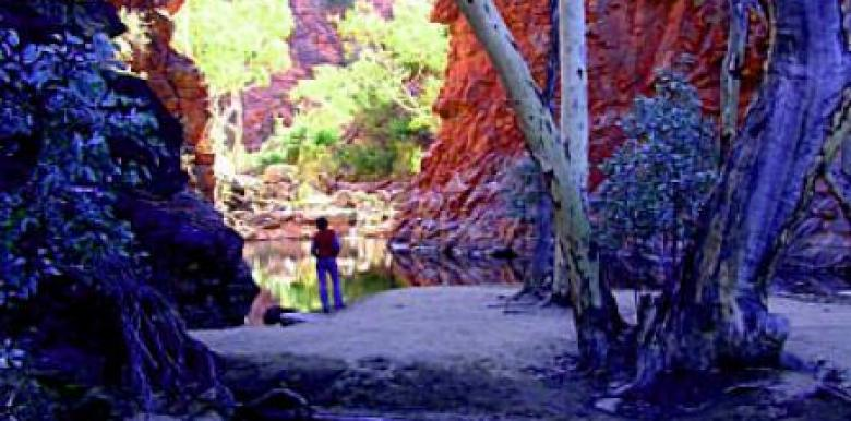 Emu Run Tours: West MacDonnell Ranges, Gorges & Waterholes Tour Day Tour