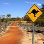 kangeroo road sign