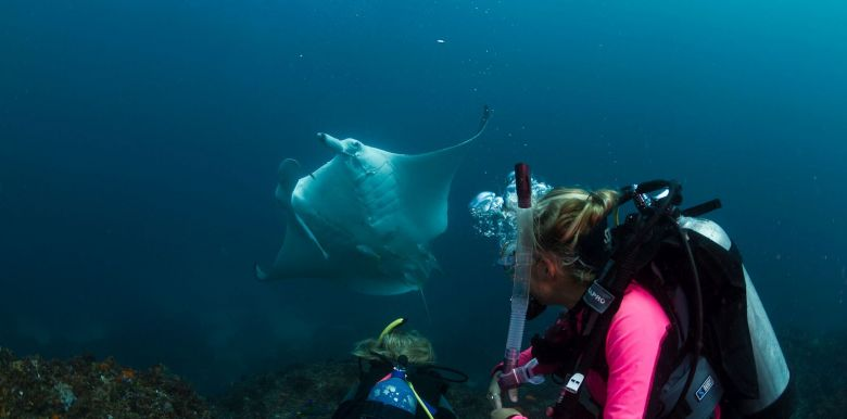 Byron Bay Dive Centre: Open Water Course