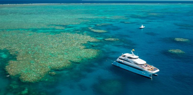 Down Under Cruise & Dive: EVOLUTION Reef Cruise (1 Day)